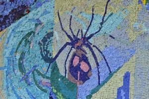 A spider mosaic.
