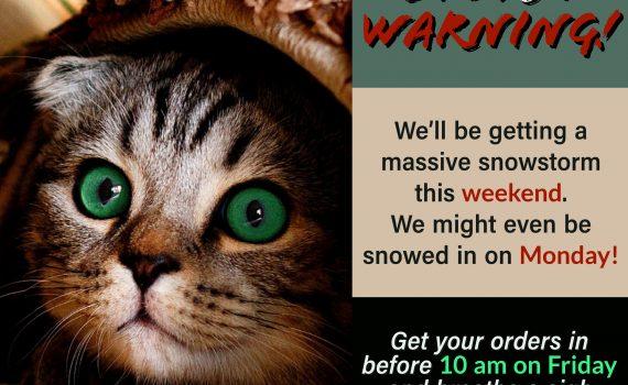 It's a winter storm warning!