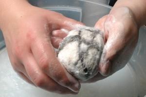 Rubbing the soap.