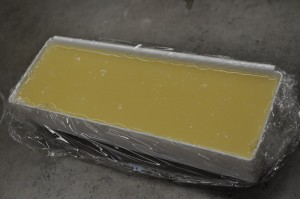 Soap in Mold